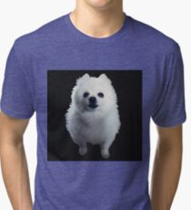 Gabe The Dog Tri-blend T-Shirt