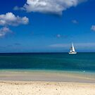 Sailboat in Antigua by Christine  Wilson