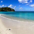 Cocobay Antigua by Christine  Wilson