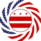 DC Murican Patriot Flag Series by Carbon-Fibre Media