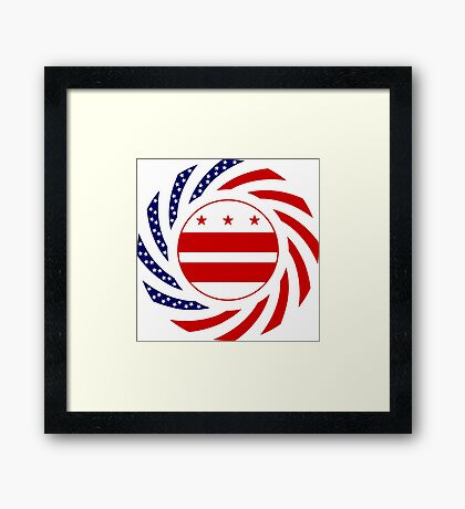 DC Murican Patriot Flag Series Framed Print