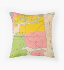 Bronx New York Throw Pillow