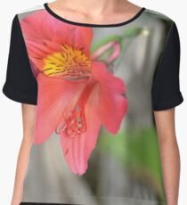 watermelon cherry  Women's Chiffon Top