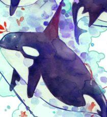 Sea queens Sticker