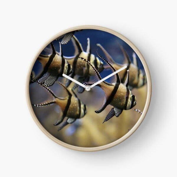 Swimming Clock