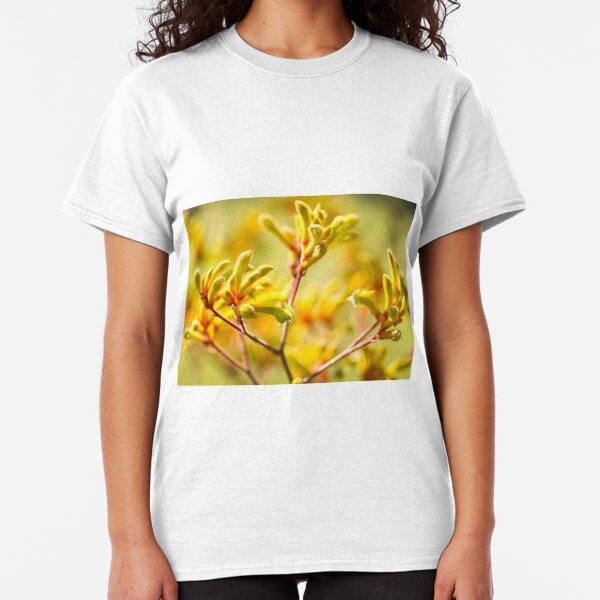 Kangaroo Paw - Western Australian wildflower  Classic T-Shirt