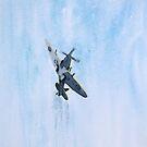 Taking Flight by Pat  Elliott