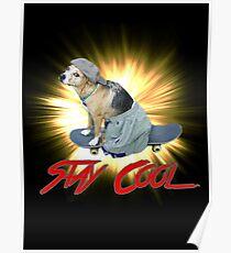 Doggo: Stay Cool Poster