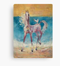 Horse and  seagull on the seaside Canvas Print