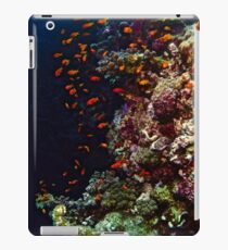 FISH & FORAGE iPad Case/Skin