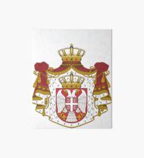 Serbia National Football Fan Jersey Design Art Board
