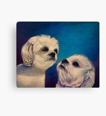 Two puppies Canvas Print