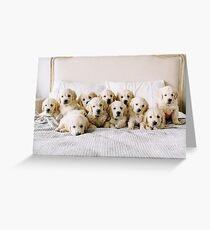 Golden Retriever Puppies Greeting Card