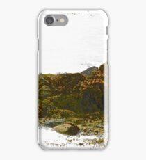 Seaweed covered rocks iPhone Case/Skin