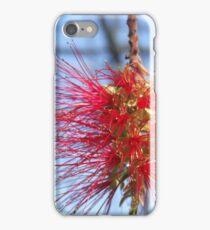 Callistemon iPhone Case/Skin