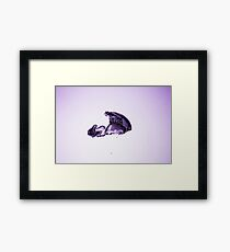 Water bubble Framed Print