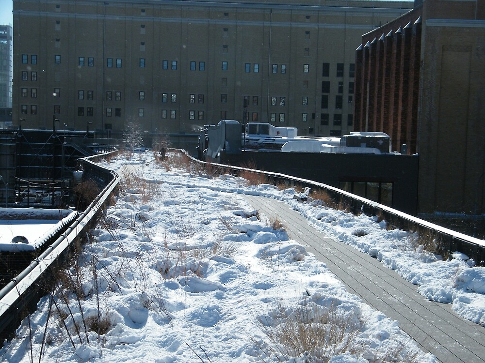The High Line After A Snow, New York City Elevated Garden and Park by lenspiro