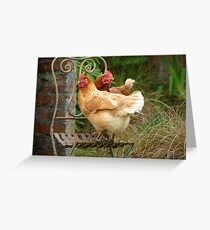 "We Are The ""CHAIRful"" Chooks Of Tranquillity! Chooks  - NZ Greeting Card"