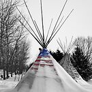 Stand Strong - North Dakota by Michael Treloar