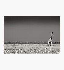 Alone Photographic Print