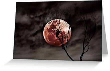 Red Moon Rising    by Steven  Sandner
