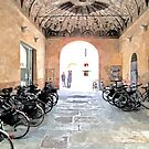 Bicycles in the yard by Giuseppe Cocco
