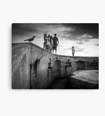 They shared a common interest ... Canvas Print