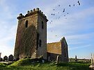 Birds in flight, Templar's Church,Templetown, Wexford, Ireland by David Carton