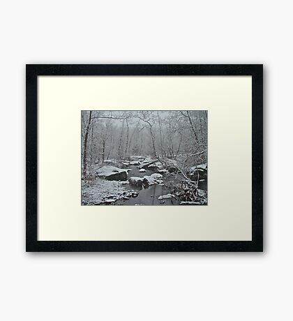Dressed in White For Winter's First Snow Framed Print