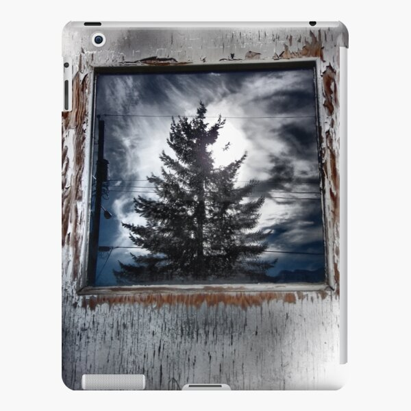 Urban Decay iPad Snap Case