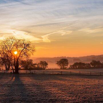 Frosty winter sunrise by Kerto