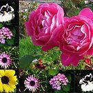 Blumencollage, die zwei rosa Rosen kennzeichnet von BlueMoonRose