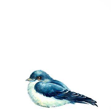 Swallow by pambrosini