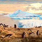 Where Penguins live and breed by © Kira Bodensted