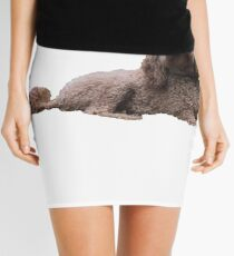 Ginger the Doodle Mini Skirt