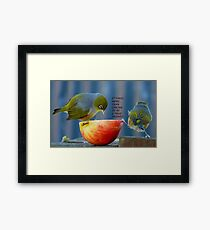 Friendship! - It Takes More Than Caring...Card - Silvereye - NZ Framed Print