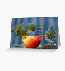 Friendship! - It Takes More Than Caring...Card - Silvereye - NZ Greeting Card