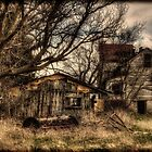 On Creepy Ground by sundawg7