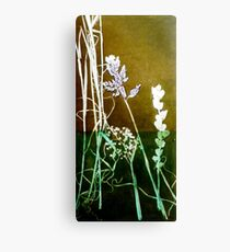 Mornington Peninsula Grasslands 6 Canvas Print