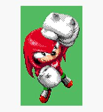 Knuckles Pixel Art Photographic Print