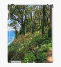 Path To Elephant Rock. Barafundle Bay. iPad Case/Skin