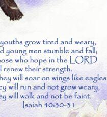 Hope & Strength, Isaiah 40:30-31  Sticker