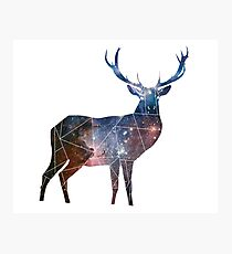 Deer Universe Minimal Geometric Photographic Print