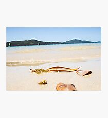 Oh To Be Washed Ashore Photographic Print