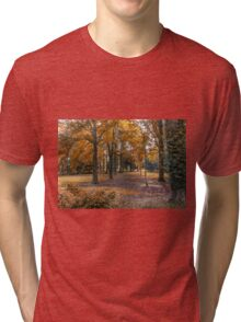 Autumn in the Woods Tri-blend T-Shirt