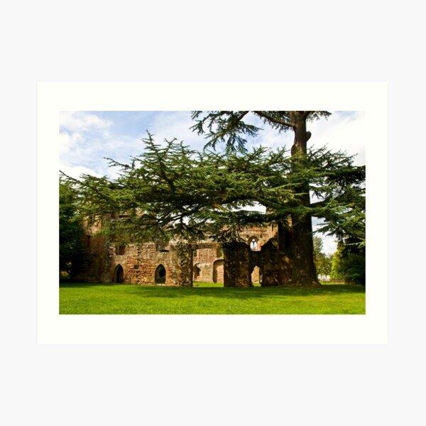 Acton Burnell Castle  #2 Art Print