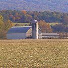 Harvest Time On The Farm by James Brotherton