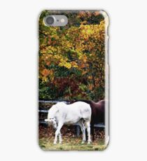 Natural Bow iPhone Case/Skin