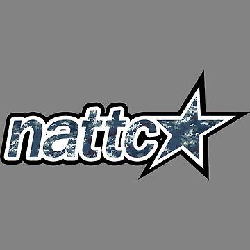 NATTC Pensacola star by bronavy