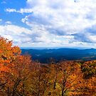 Blue Ridge Spectacle    by Miles Moody
